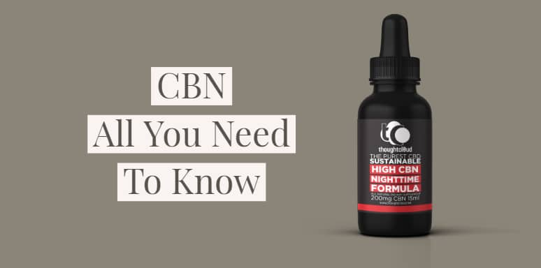 All You Need To Know About CBN