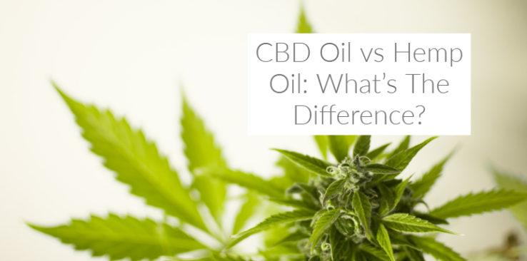 CBD Oil vs Hemp Oil: What's The Difference?