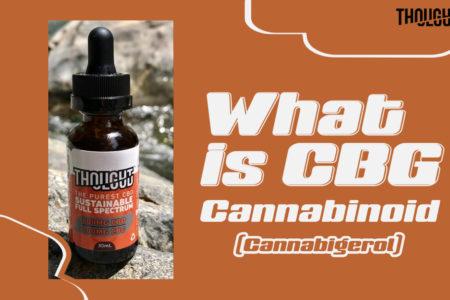 What is CBG or Cannabigerol – Benefits of CBG Cannabinoid