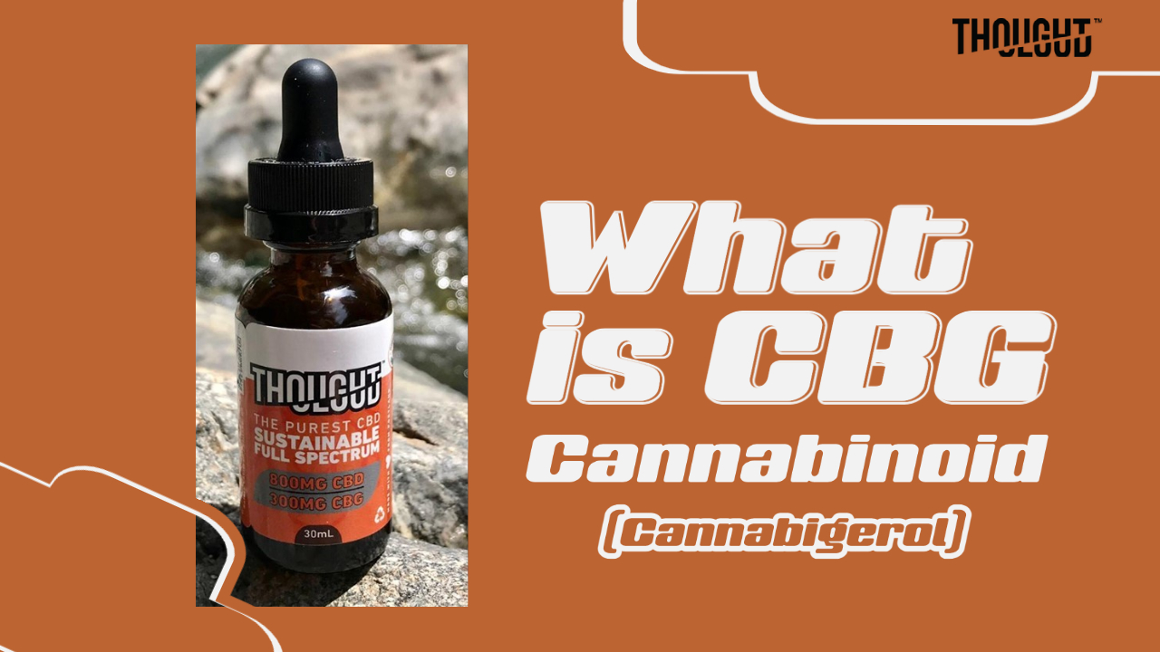 What is CBG or Cannabigerol – Benefits of CBG Cannabinoid