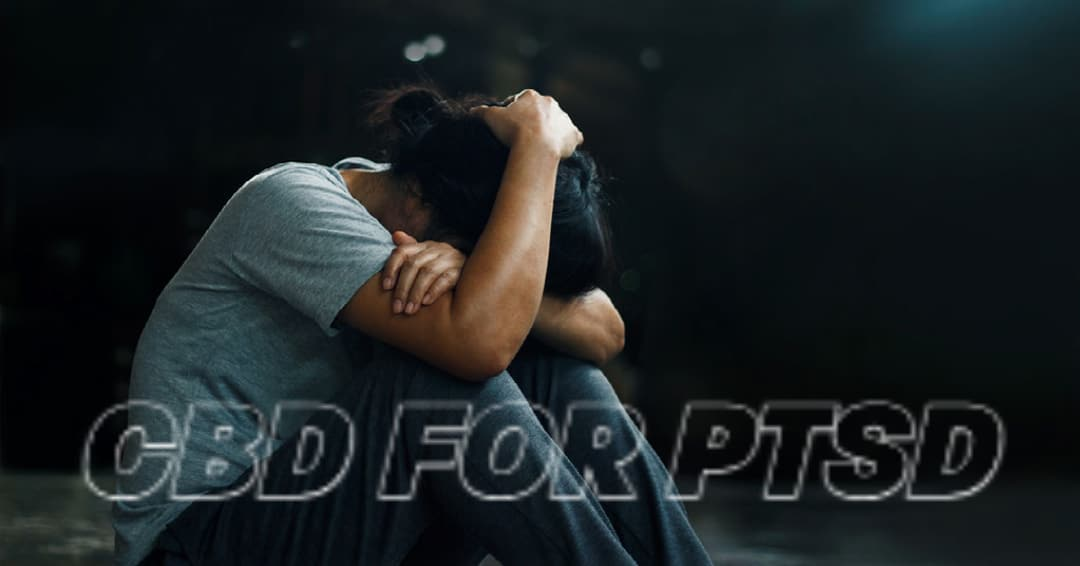 How Can CBD Treat Post Traumatic Stress Disorder?