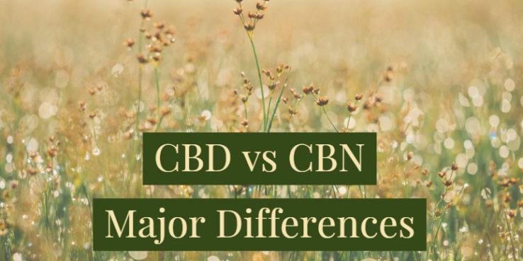 CBD vs CBN,CBD and CBN