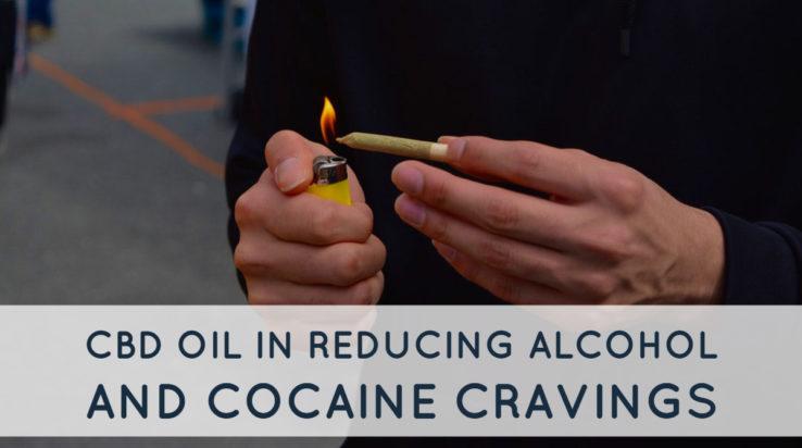 CBD Oil Alcohol Addiction
