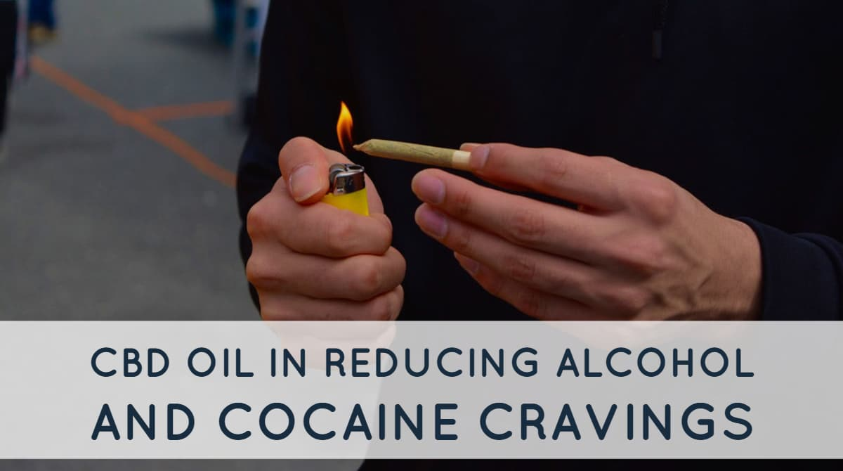 CBD Oil May Help In Reducing Alcohol And Cocaine Cravings
