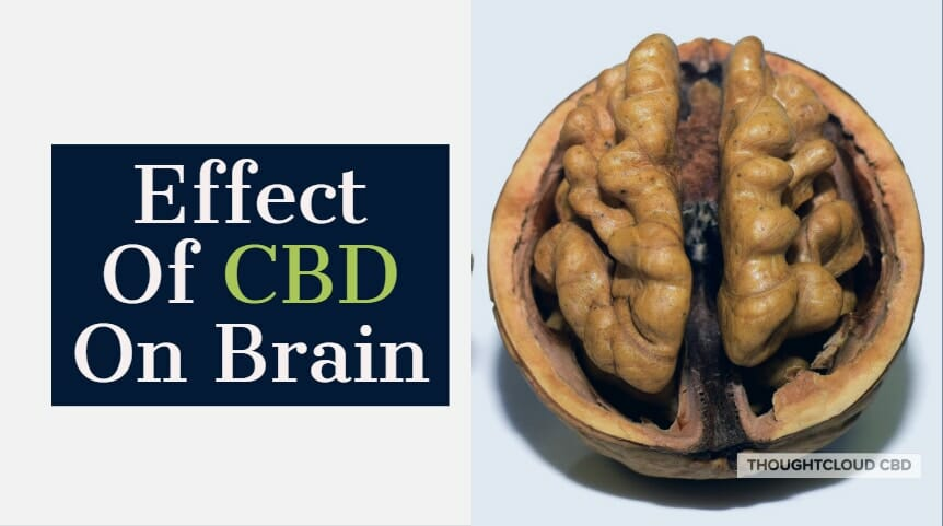 Effects of CBD on brain