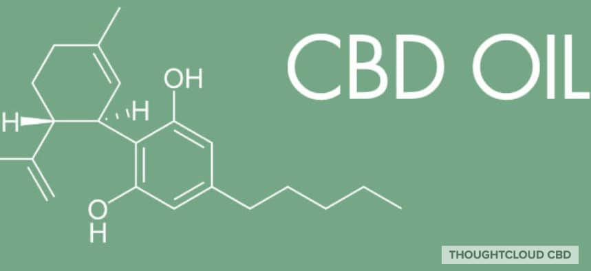 CBD Oil benefits of cbd coconut oil,benefits of cbd oil,benefits of cbd oil for anxiety,benefits of cbd oil for cancer,benefits of cbd oil for cats,benefits of cbd oil for dogs,benefits of cbd oil for gout,,benefits of cbd oil for horses,benefits of cbd oil for pain,benefits of cbd oil for pets,benefits of cbd oil for rheumatoid arthritis,benefits of cbd oil hemp
