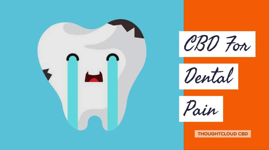 CBD For Dental Pain | How Effective it is?