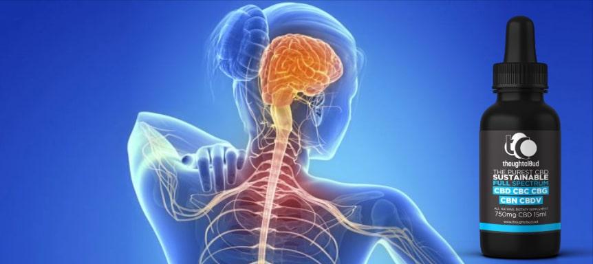 CBD Treat Neuropathic Pain