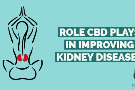 Role CBD Plays In Improving Kidney Diseases