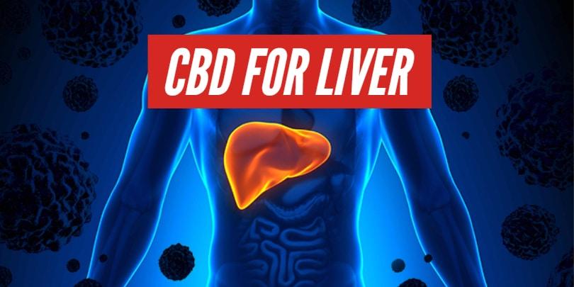 CBD For Liver