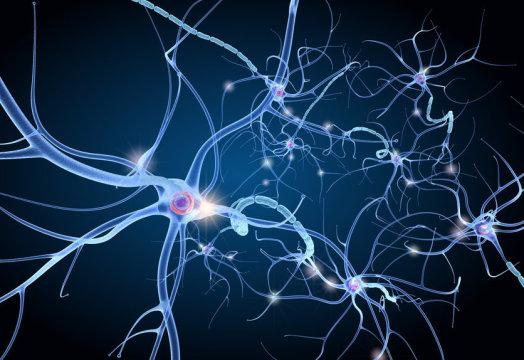 cbd oil and neurological disorders