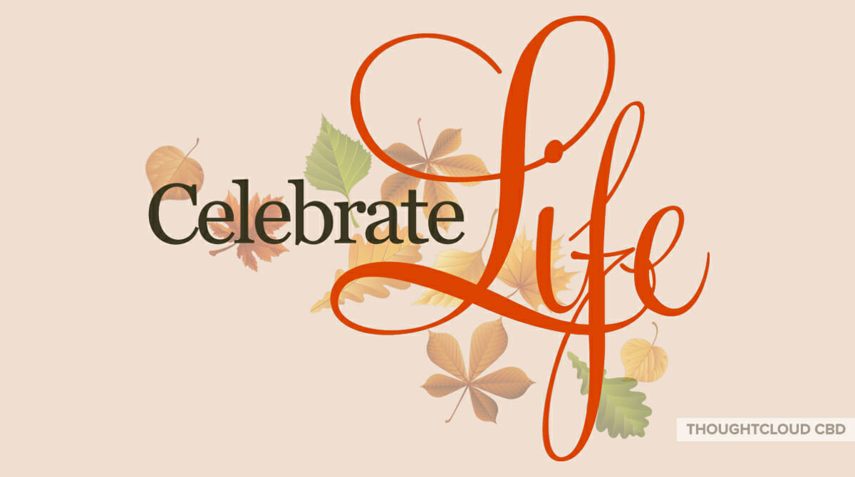 Celebrate Life For Its Everything