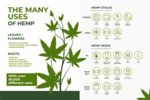 Hemp CBD Legalization