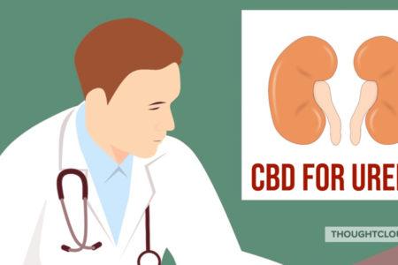CBD For Uremia | Kidney Disease Causes, Symptoms, Diagnosis