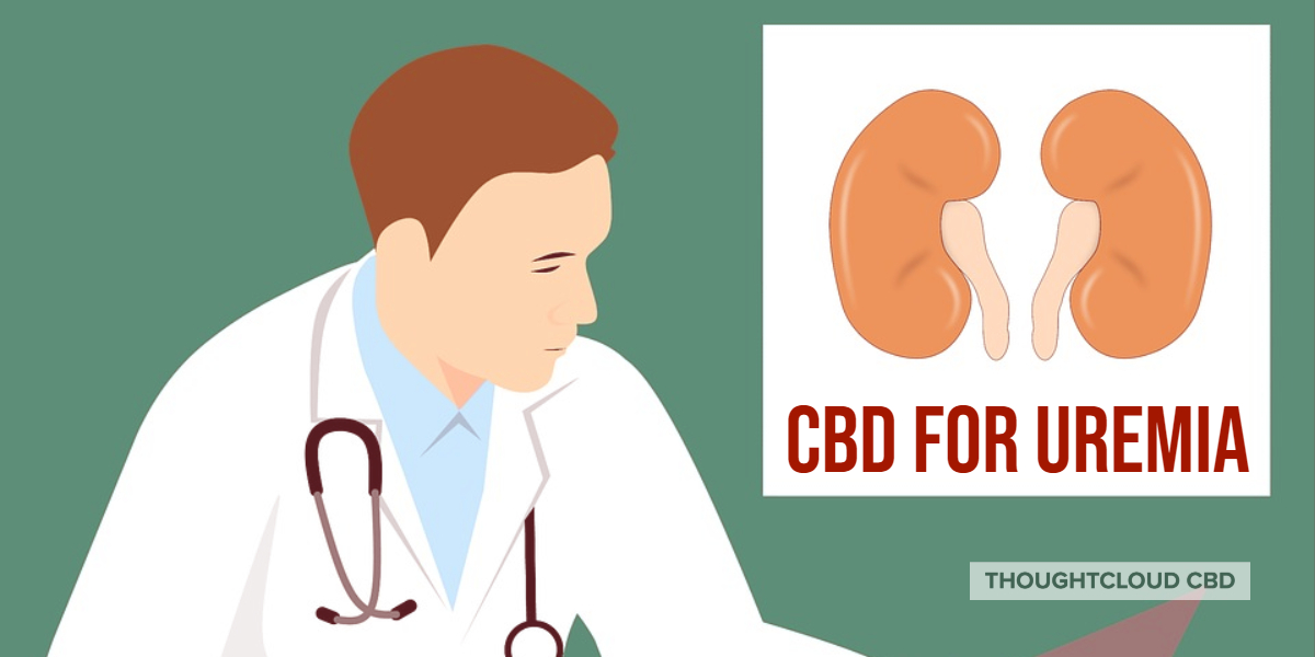 CBD For Uremia