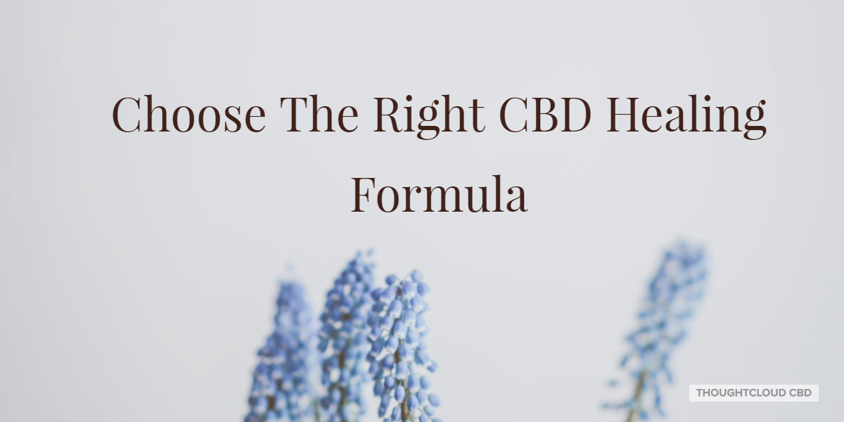 Right CBD Healing Formula For Yourself And Promote Homeostasis