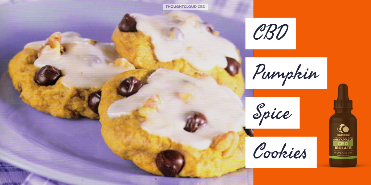 CBD Pumpkin Spice Cookies | Relish Your Evening Supper With The Healthy