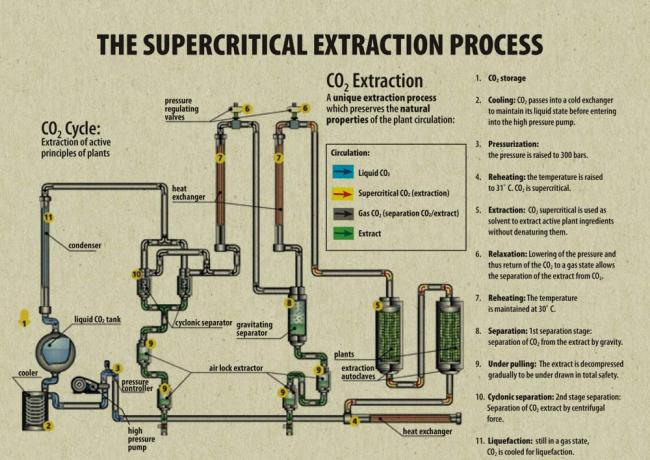 CBD Extraction Methods