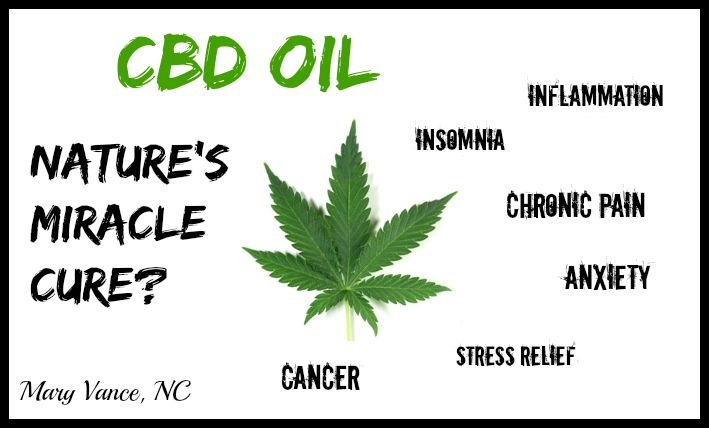 CBD Healing Formula For Your to Promote Homeostasis