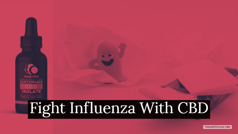Recover Naturally From Influenza With CBD