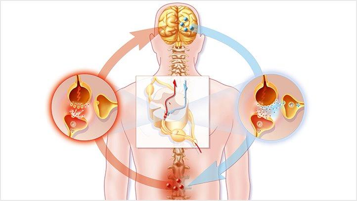Neuropathic pain CBD Oil 2019,CBG Oil For Inflammation