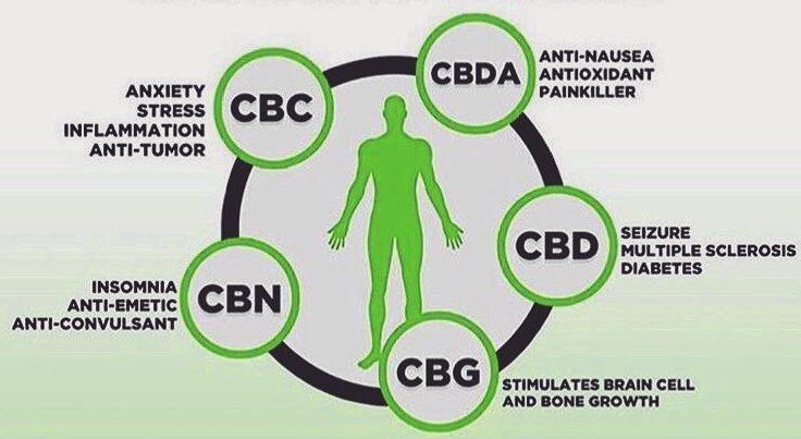 CBD benefits 2019
