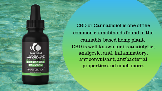 What Is CBD Oil?,CBD Oil benefits