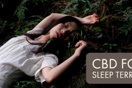 Ways Along With CBD To Treat Sleep Terrors