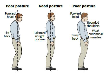 CBD for weak core muscles, poor posture