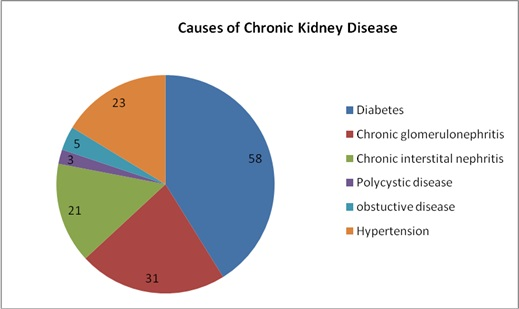 kidney issue