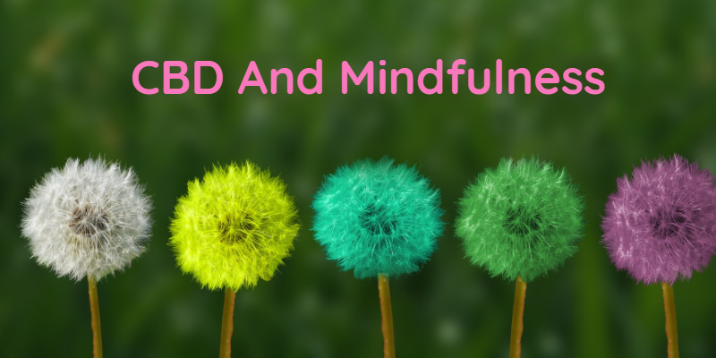 Try These Effective Ways Along With CBD To Promote Mindfulness