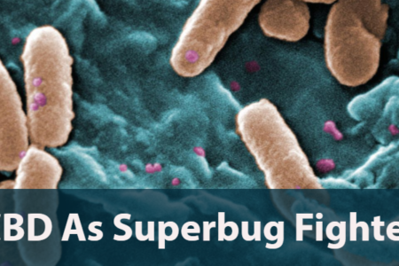 Latest Study Reveal That CBD Can Kill Antibiotic-Resistant Superbugs
