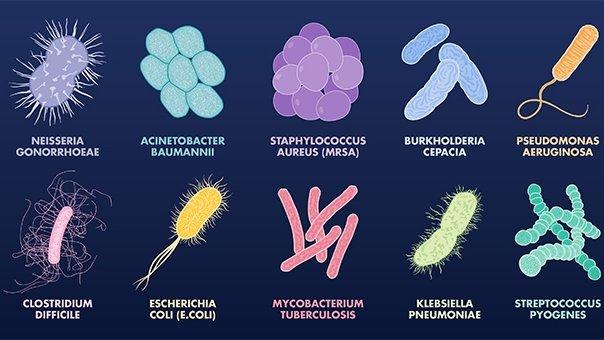 CBD Can Kill Antibiotic-Resistant Superbugs