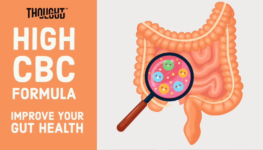 cbc oil for gut health
