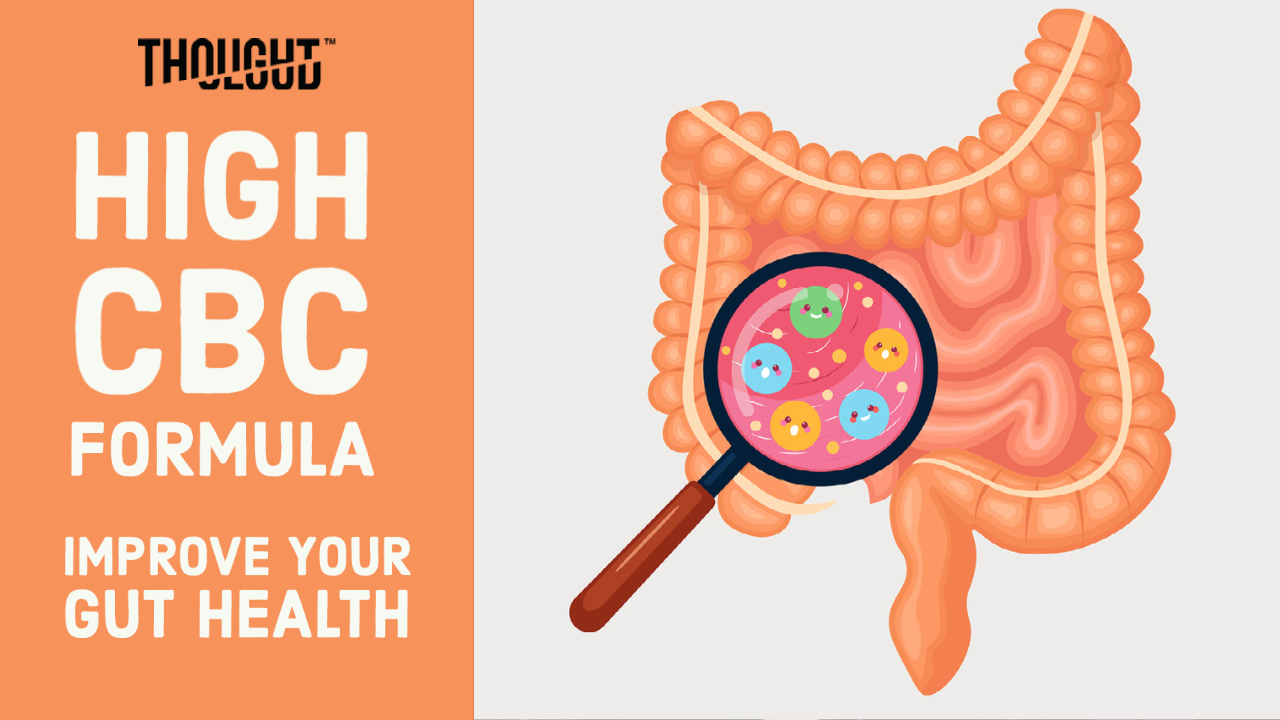 Try CBC Oil to Improve Your Gut Health