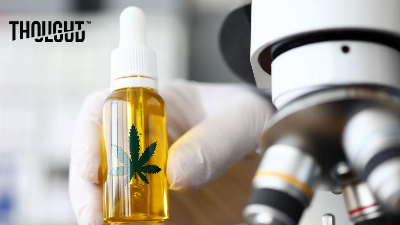 The Big Six Major Cannabinoids Effects