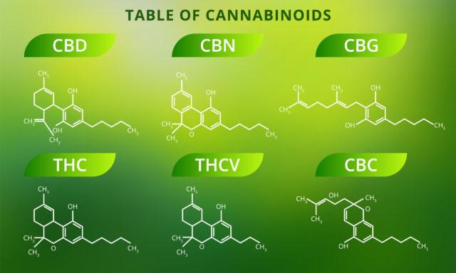 Cannabinoids Effects