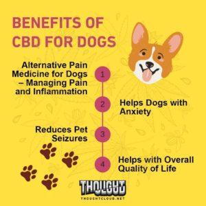cbd to calm dogs