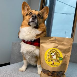 Benefits Of CBD to Pets