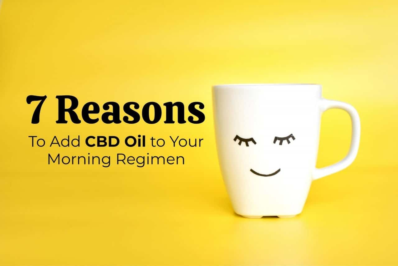 Reasons to Add CBD Oil to Your Morning Regimen
